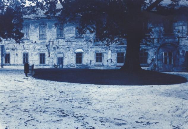 Schloss Gödöllö, 2010